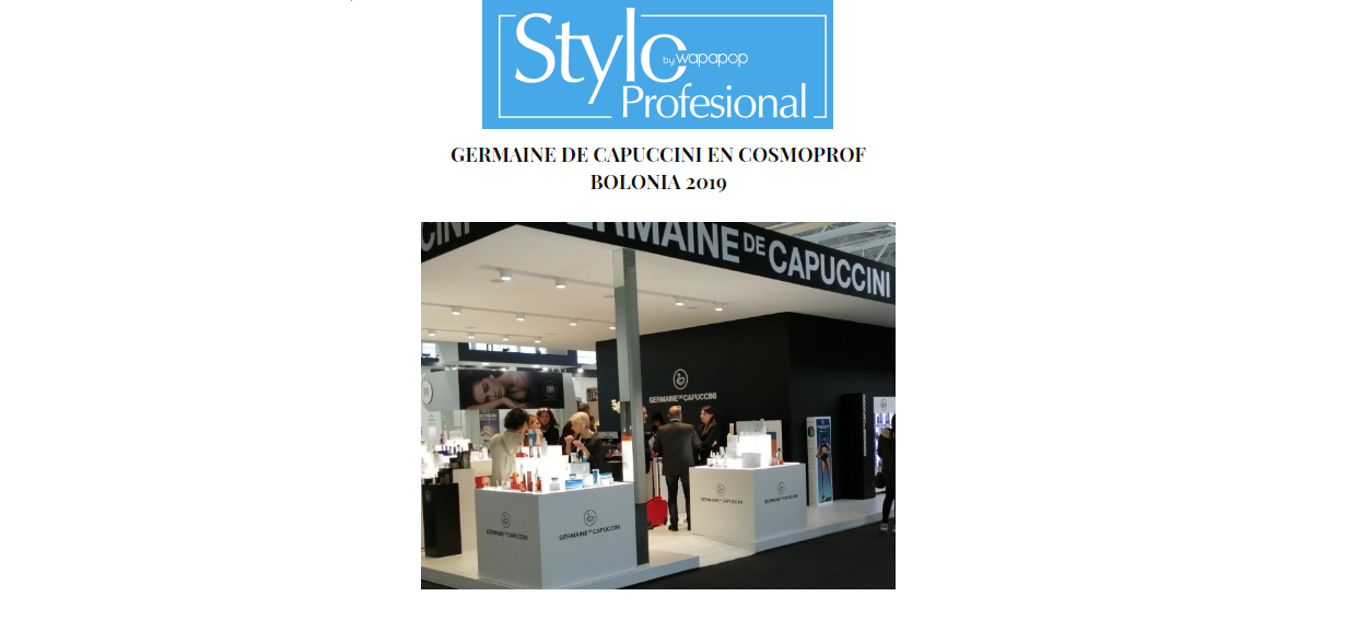 Styloprofessional online